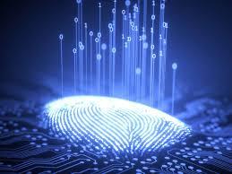 2BE - Scienze e Tecnologie Applicate 2020/2021